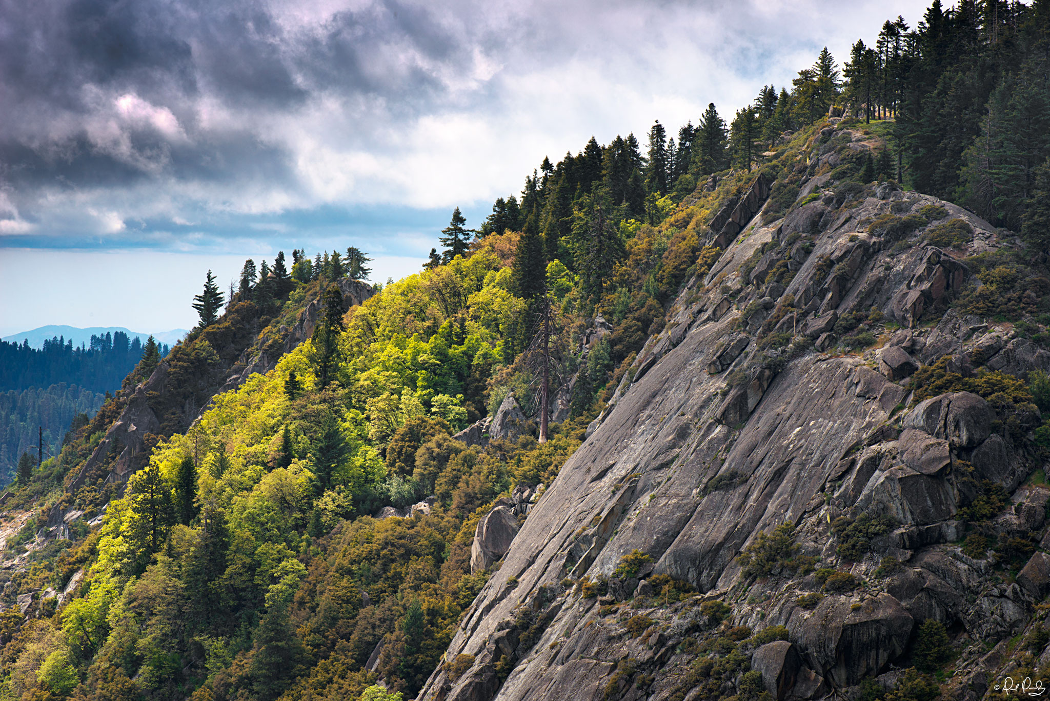 View from moro rock dqphotos com